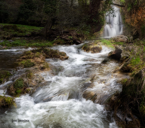 Dream water falls