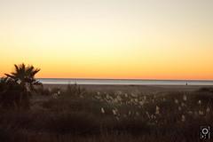 Conil, playa de los Bateles
