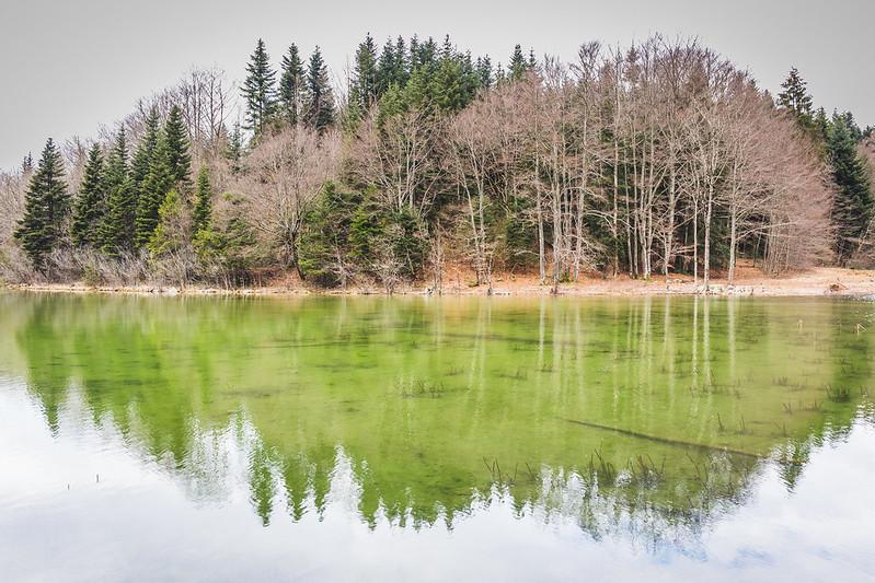 Lac du Petit Maclu - Jura - Avril 2018