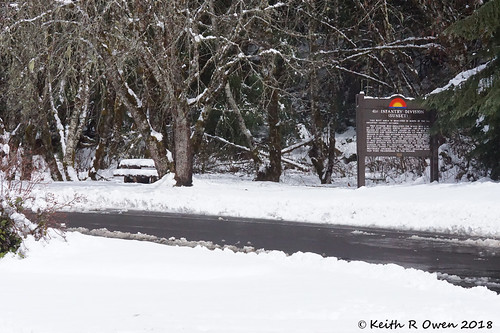 oregon sunsethighway restarea snow