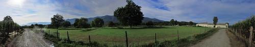 20120925 27 064 Jakobus Weg Wald Wiese Haus Baum Feld_P01