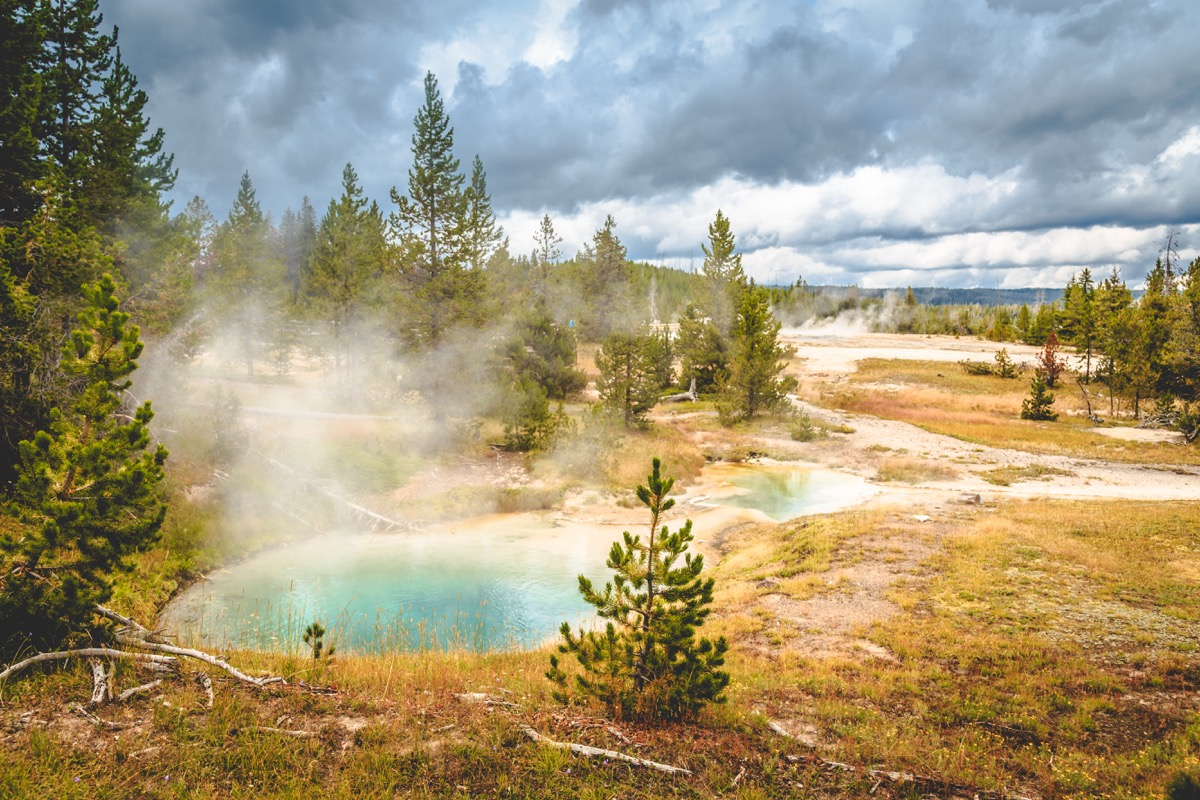 Yellowstone-10