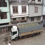 load of Pineapple