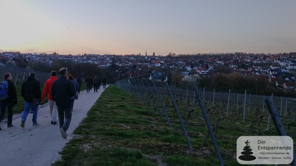 Weinwanderung nach Essenheim, Vinocamp Rheinhessen 2018