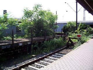 DB Rungenwagen in Hanau