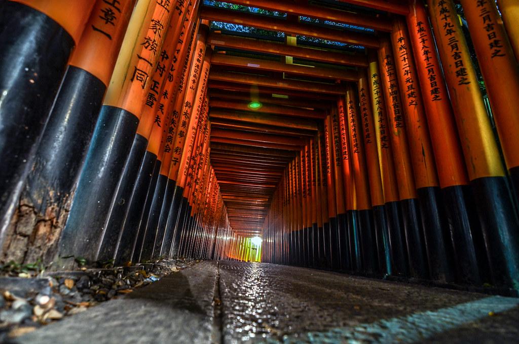 Fushimi Inari curve night