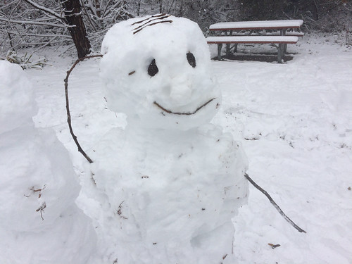 Snowman Version of Roll Safe