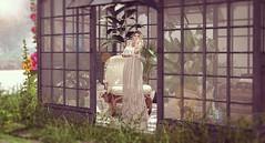 Little Greenhouse-feelings