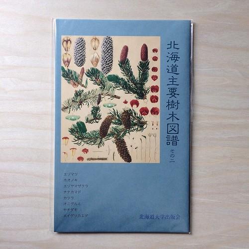 北海道主要樹木図鑑ポストカード その二 ¥432