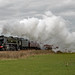 South Cheshire Steam