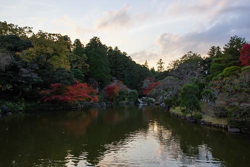 japon japan asia asie stephanexpose canon 600d 1635mm 1635mmf28liiusm narita parc park nature arbre tree eau water lac lake coucherdesoleil sunset