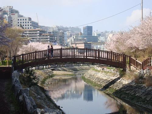 Yeongdo Dongsamdong