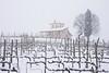 Nevicata in Franciacorta ad inizio Marzo 2018 nei terreni di Berlucchi