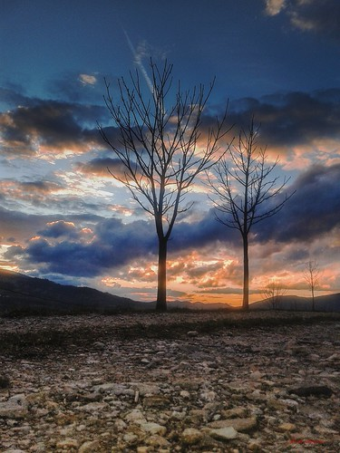 sunset nature edit photography sabanovicphotography flowers trees photoshop wilderness throughherlens black birds sun rocks hills mountains