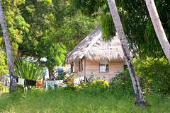 Oreala - Guyana