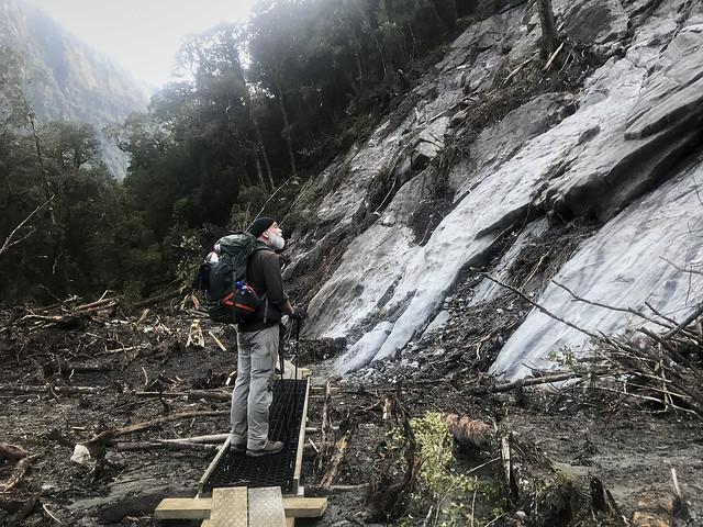 Recent tree avalanche