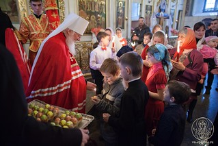 Покровский собор 430