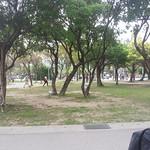 Taipei Walking Tour Daan Park