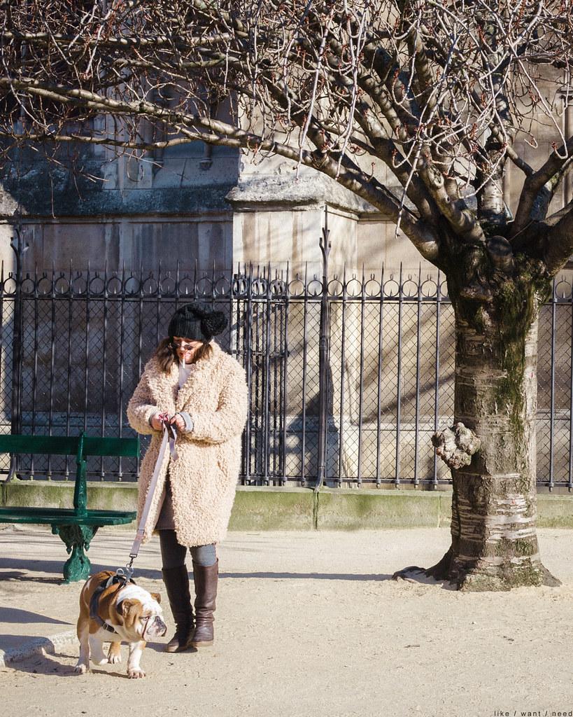 A lady & a dog, Notre-Dame
