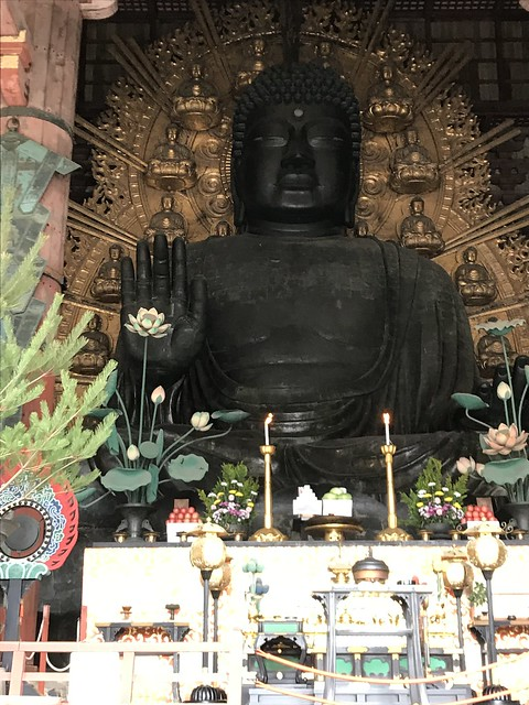Close up of the buddha