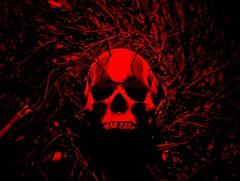 Blair Skull