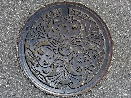 Takano Hiroshima, manhole cover (広島県高野町のマンホール)
