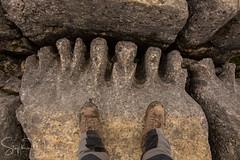 Bigfoot on The Limestone Pavement