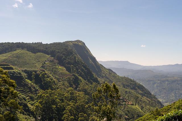 Hakgala Peak