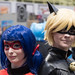 Ladybug & Cat Noir - The Miraculous Ladybug