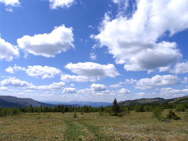 Под синевой живописного неба, Canon POWERSHOT PRO1