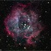 The Rosette Nebula in the Constellation Monoceros