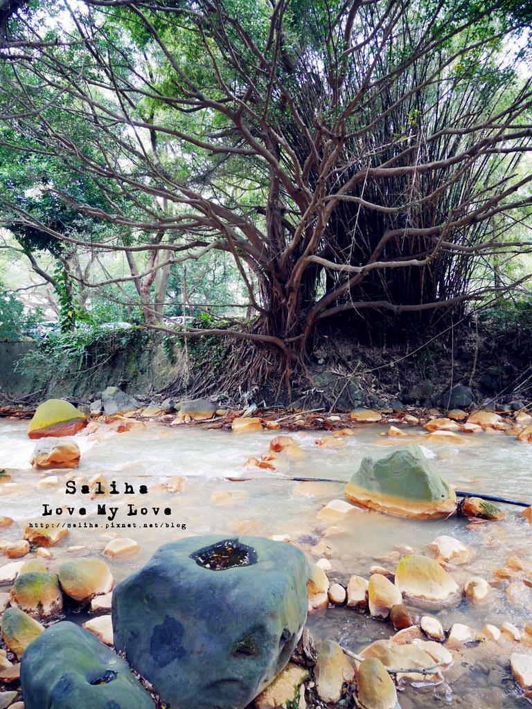 台北士林區天母一日遊行程推薦天母公園 (28)