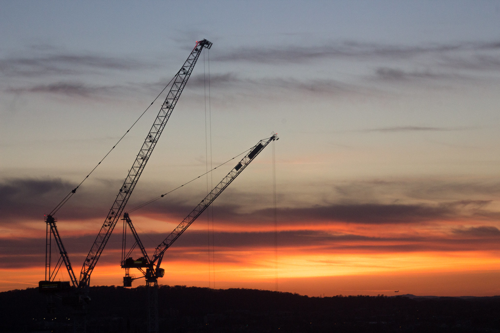 Silhouettes of cranes against the sunset in Edinburgh