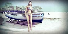 Sur la plage Coco Câline...