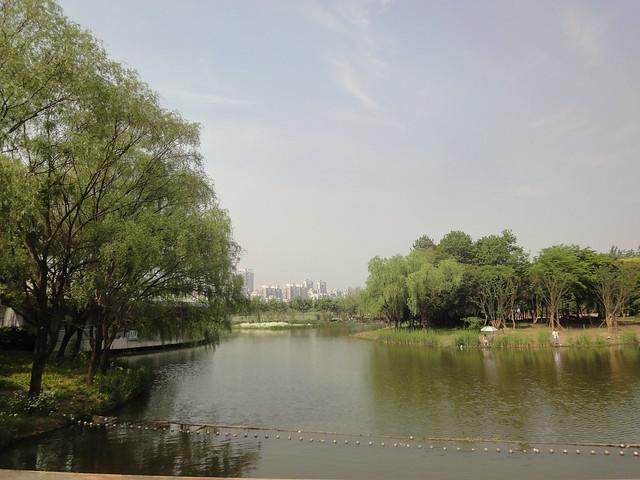 2012-05-Shanghai-CenturyPark-005