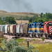 ICE 6216 | EMD SD40-2 | DME Black Hills Sub by M.J. Scanlon