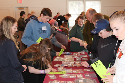 Minneapolis young numismatist auction lot viewing