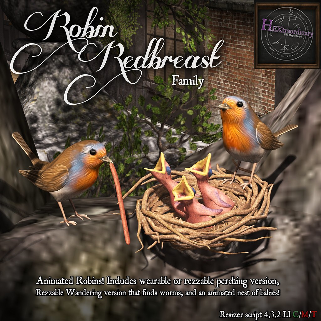 Robin Redbreast Family