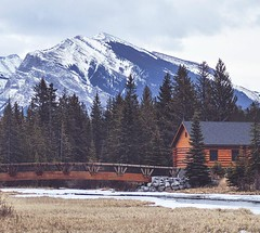 The log homes around here are 👌  🌎 Canmore, Alberta, Canada |  Alice