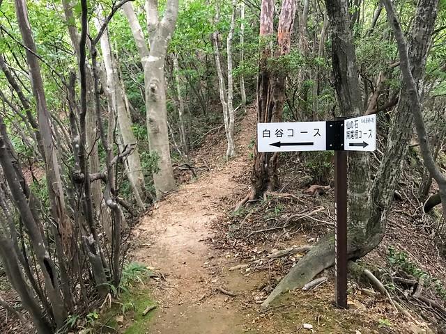 仙ヶ岳 仙鶏尾根・白谷道 分岐