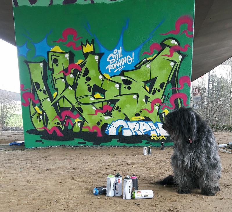 Ryck Wane (10)