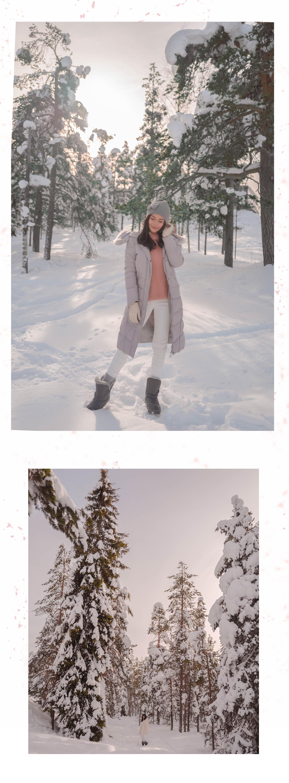 VV Snow 1