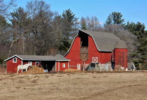 Red Barn and Wooden Silo