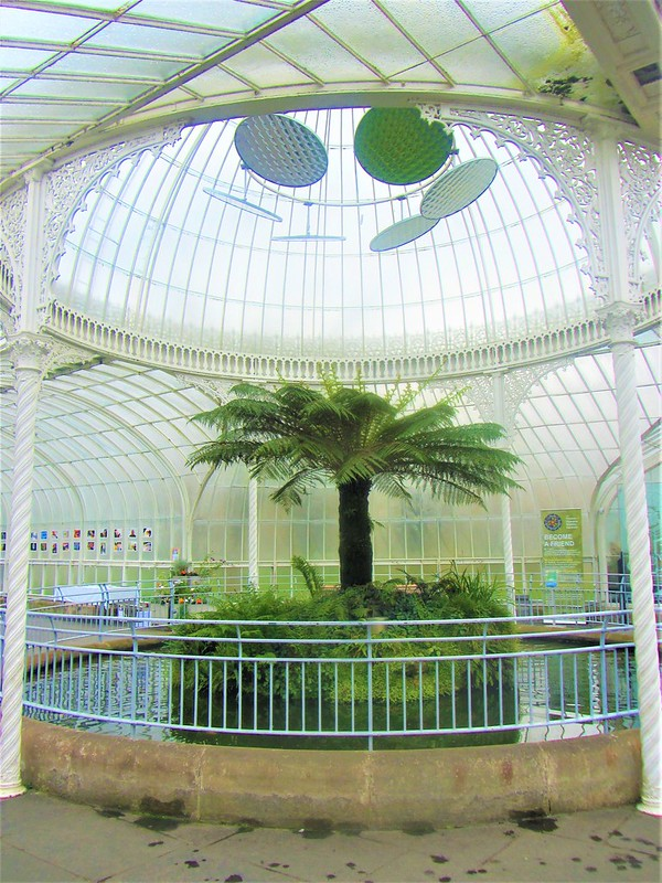 glasgow-ecosse-botanic-gardens-kibble-palace-thecityandbeauty.wordpress.com-blog-voyage-IMG_0067 (3)