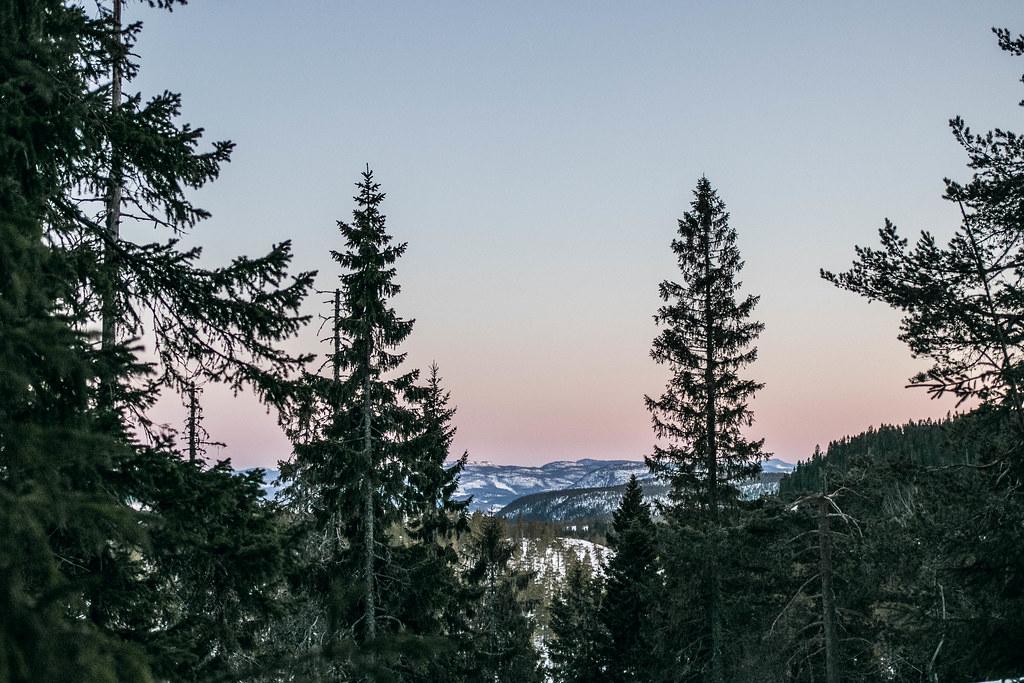 180411 - Skuleskogen med Rania