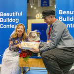 2018 Beautiful Bulldog Contest