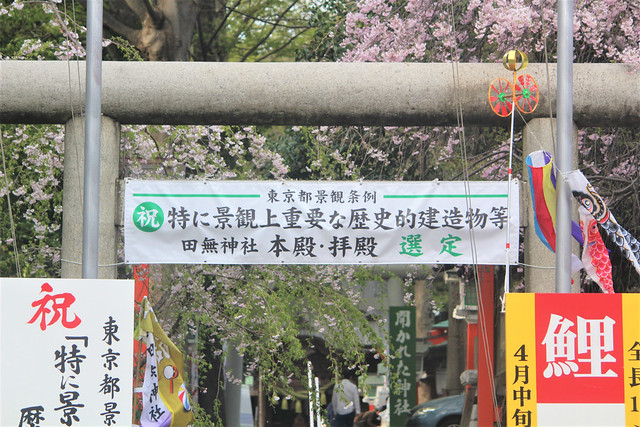 tanashijinja-gosyuin03039