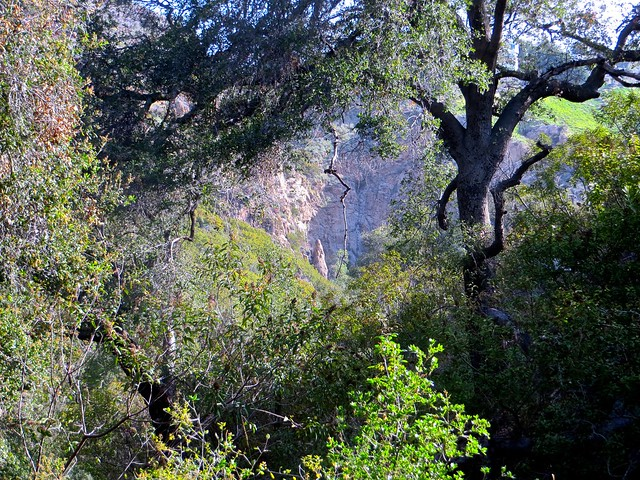 solstice canyon secret trail