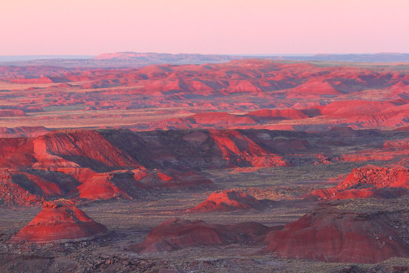 IMG_7387 Pintado Point, Petrified Forest National Park