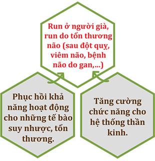 Cơ chế tác động của Vương Lão Kiện với chứng run do nguyên nhân khác